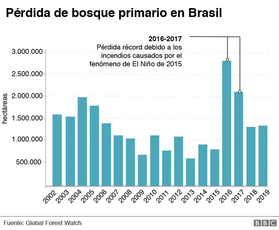 Pérdida de bosque primario en Brasil.