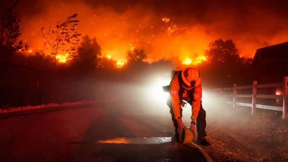 California'daki orman yangınları