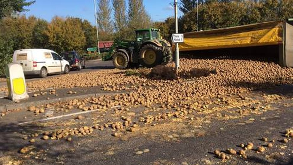 Spuds flood Yeovil road as tractor sheds load