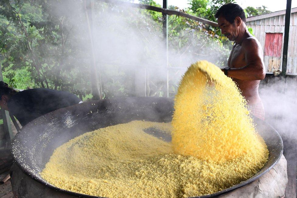 Preparación de harina de mandioca en Brasil.