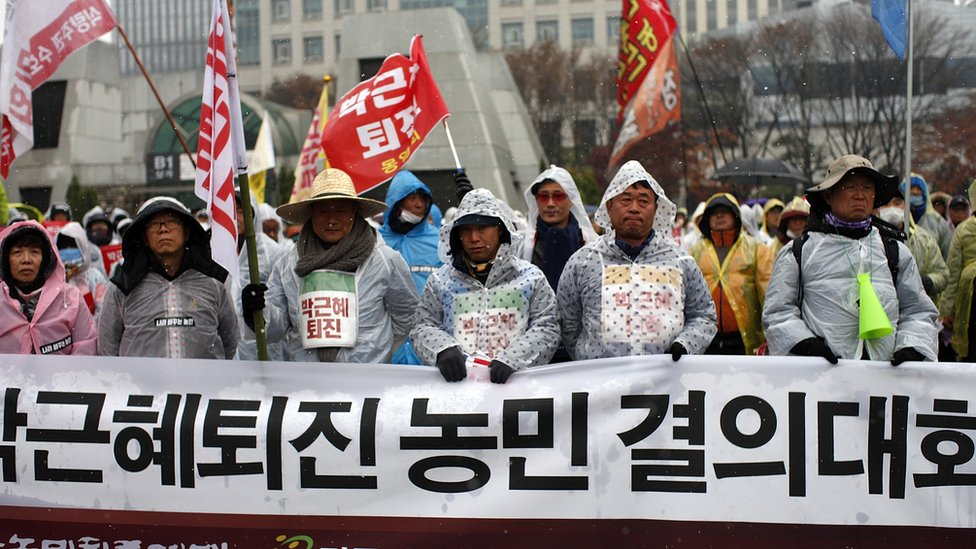 Farmers join protests against South Korea's president