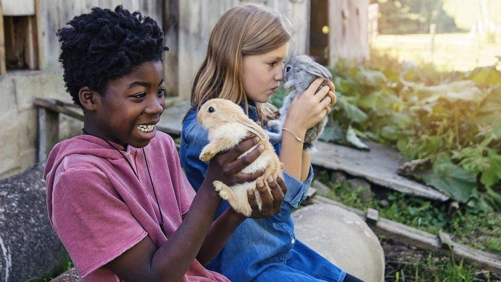 Haz que tus hijos ayuden con el cuidado de los animales, es bueno para ti y para ellos