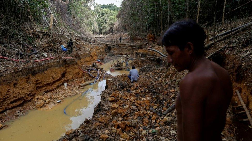 Memurlar denetimleri sırasında ormanın ortasındaki bu kaçak altın madenini tespit etmişti