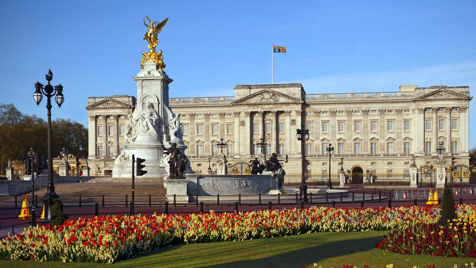 Buckingham Palace: Man arrested over 'Taser'