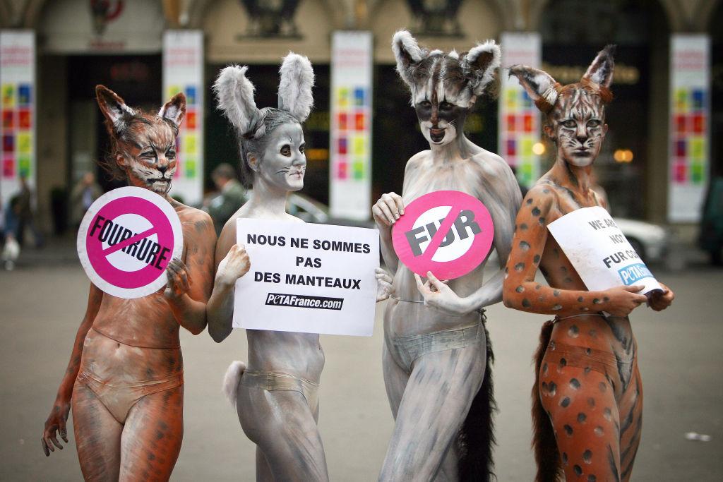 krzno, životinje, protest