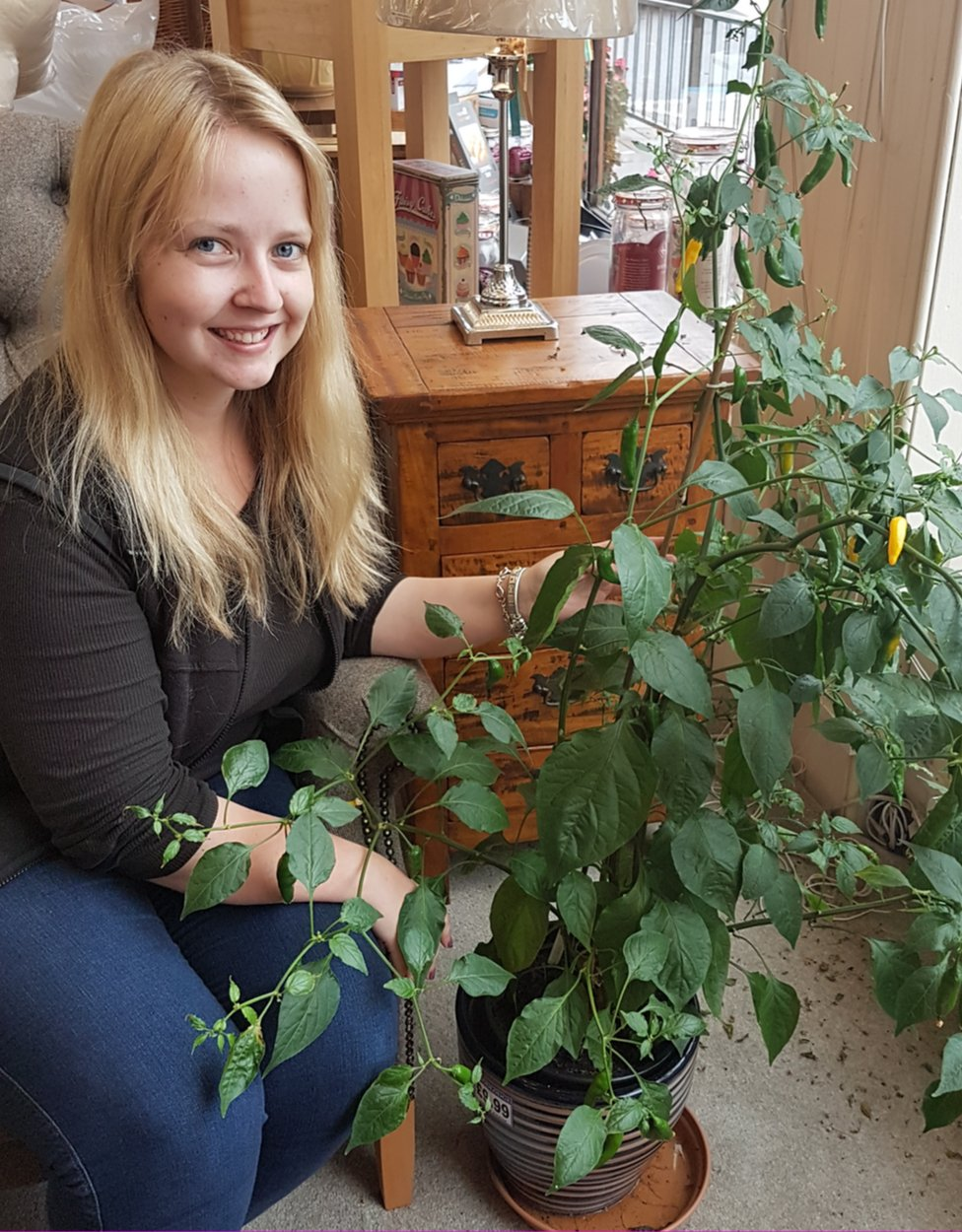 Katherine Latimer and her chilli plant in Latimer's of Langholm