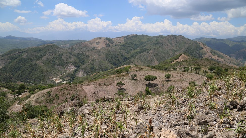 A drought-hit hillside in Guatemala