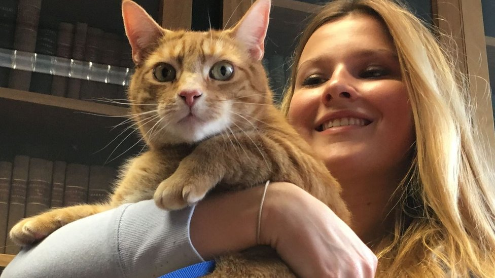 Cambridge University's animals help students de-stress