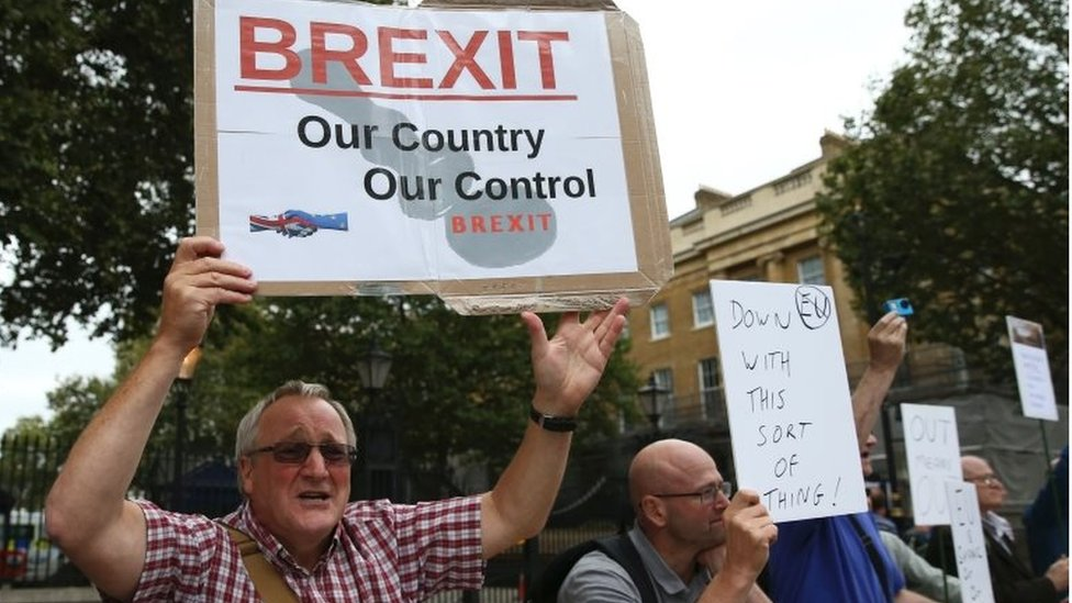 Man holds pro-Brexit banner