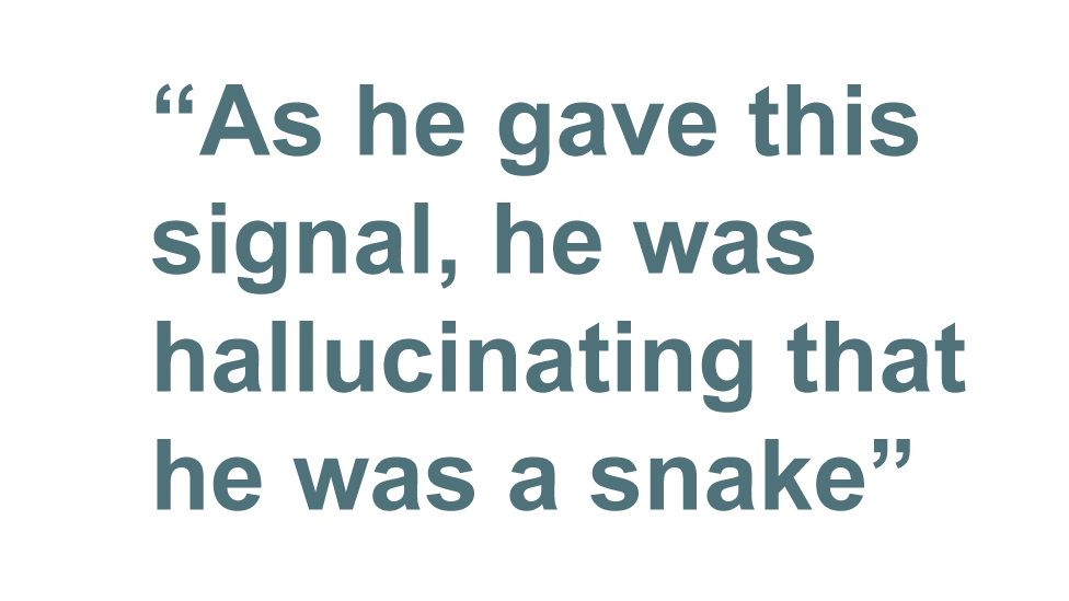 Quotebox: As he gave this signal, he was hallucinating that he was a snake