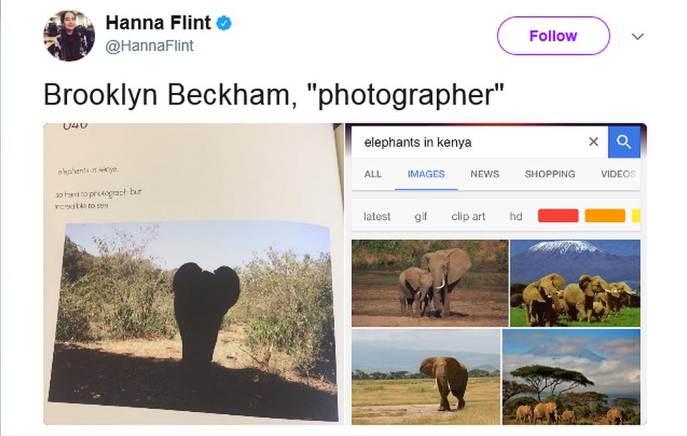 Hannah Flint's tweet comparing Brooklyn's elephant photo with other elephant photos from Google