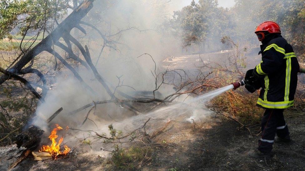 Vatrogasac gasi plamen koji je izbio u Kogolinu u francuskoj regiji Var