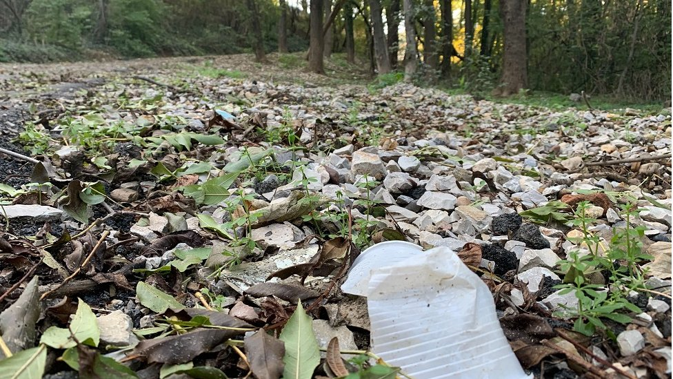 plastika u šumi