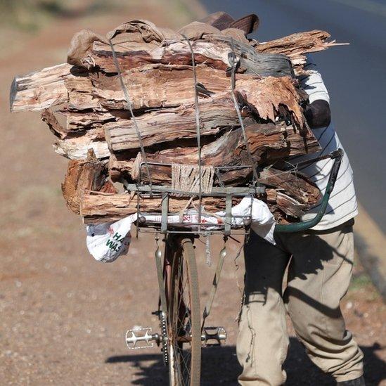 Un hombre lleva una carga de leña en su bicicleta