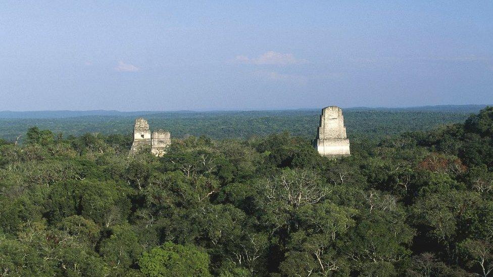 Las ruinas de Tikal, en Guatemala