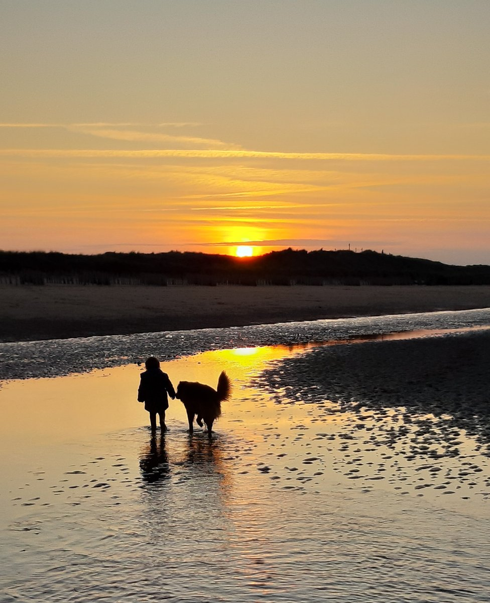 Silhouette of a child and a dog on a beach