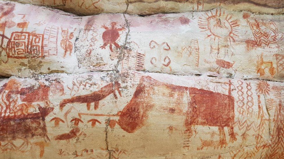 crteži na stenama u amazoniji