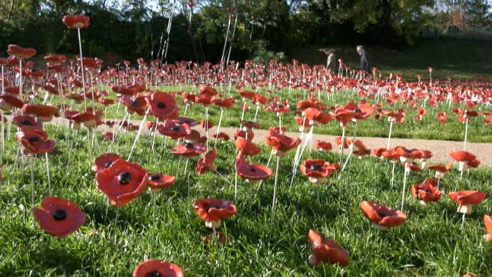 WW1 poppy display in Rutland praised by Prince Harry