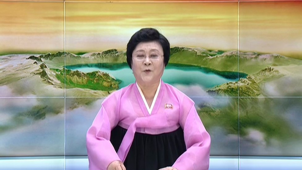 North Korean senior newsreader Ri Chun-hee in front of a backdrop showing Mount Paektu
