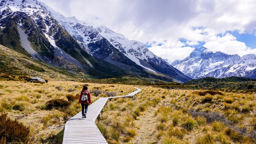 Woman walking through golden meadow on Hooker Valley trail, Mount Cook national park, New Zealand