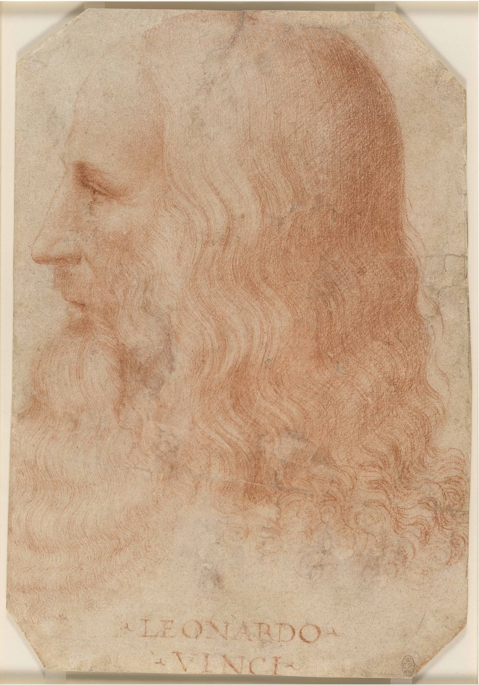 A portrait of Leonardo da Vinci by Francesco Melzi