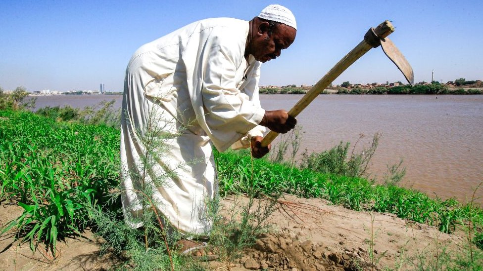 A farmer working in Sudan along the Blue Nile near Khartoum, Sudan