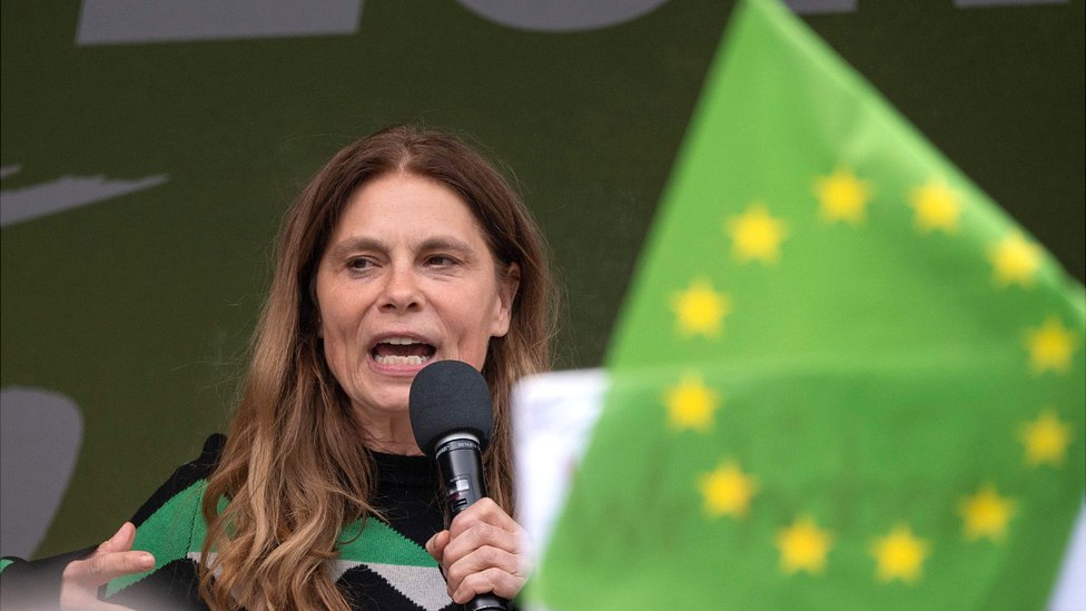 European elections 2019: Political climate may boost Greens