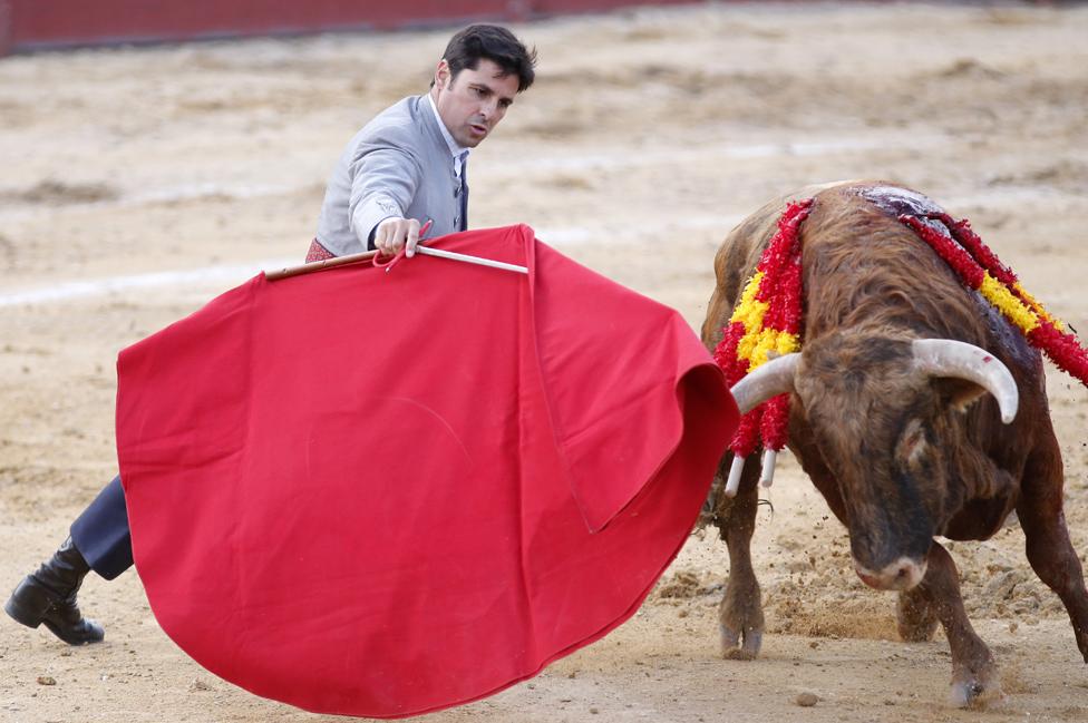 Cádiz bullfight, 20 Apr 19