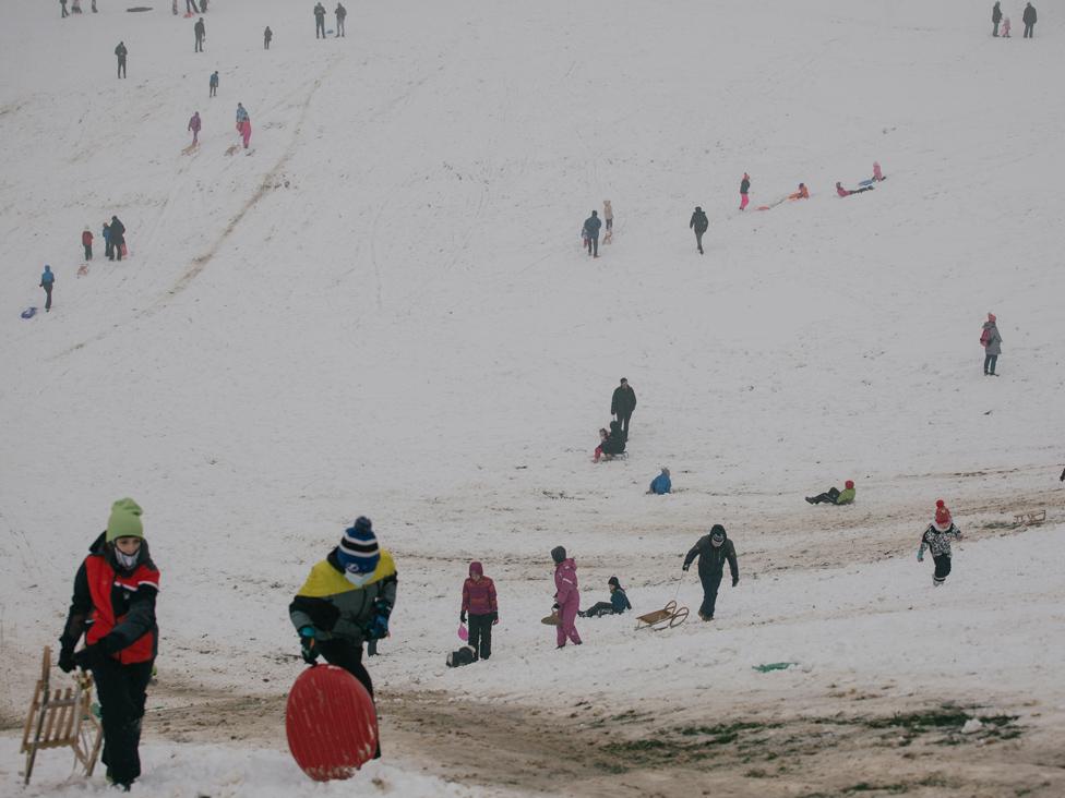 sneg, zima, košutnjak, sankanje