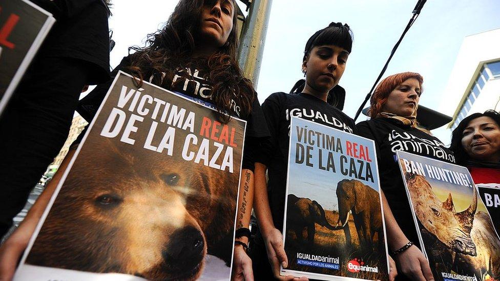 Protesta contra el rey Juan Carlos I por haber ido de caza
