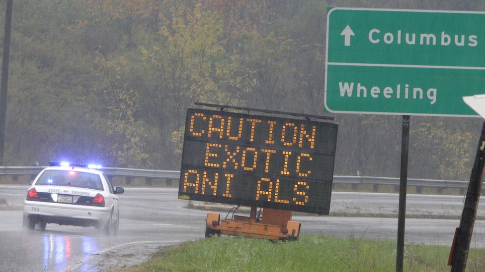 An Ohio State Highway Patrol officer drives past a sign warning of the exotic animals on the loose
