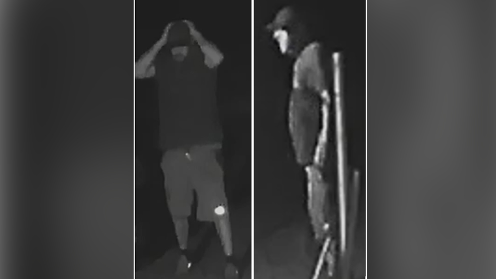 CCTV footage of dog theft suspects