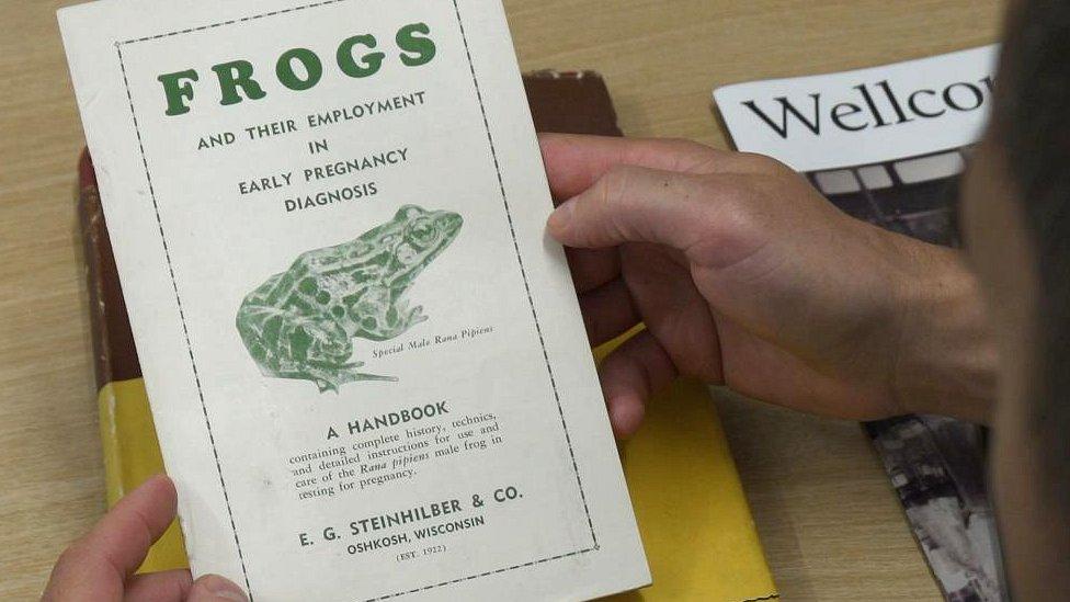 Un folleto con información sobre las pruebas de embarazo con ranas