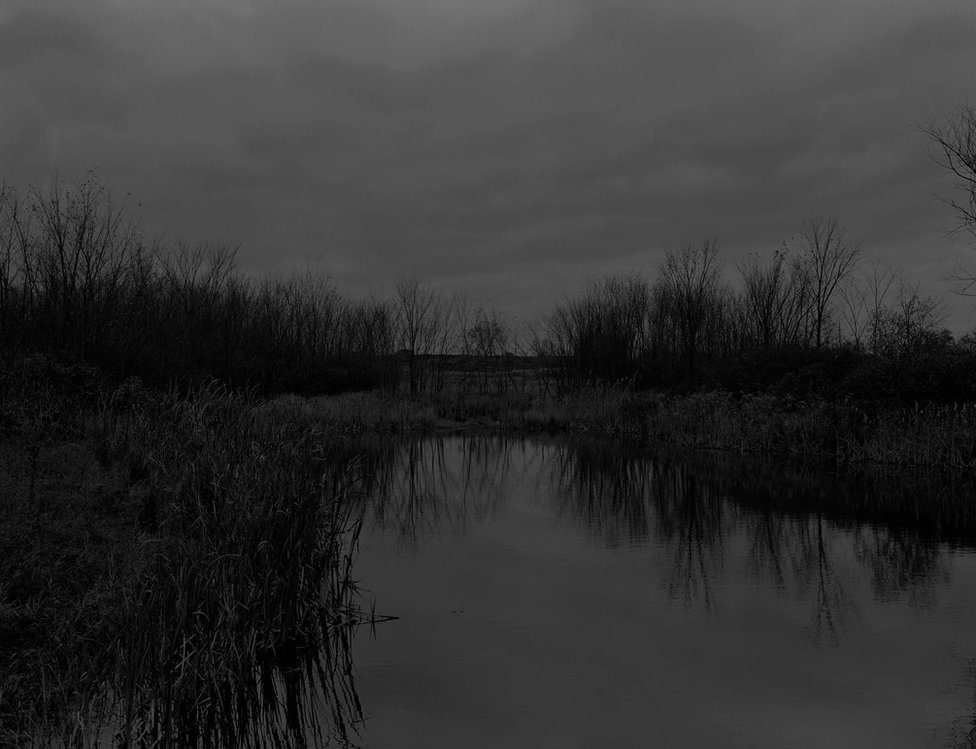 Bey-Untitled #12 (The Marsh) by Dawoud Bey