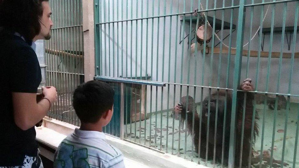 student i štićenik u zoološkom vrtu