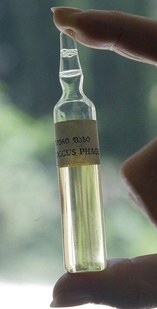Empolla con bacteriófagos