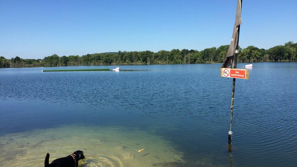 Mercer's Lake