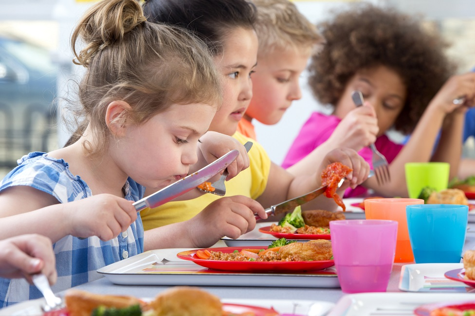SNP pledge free school meals for all primary pupils thumbnail