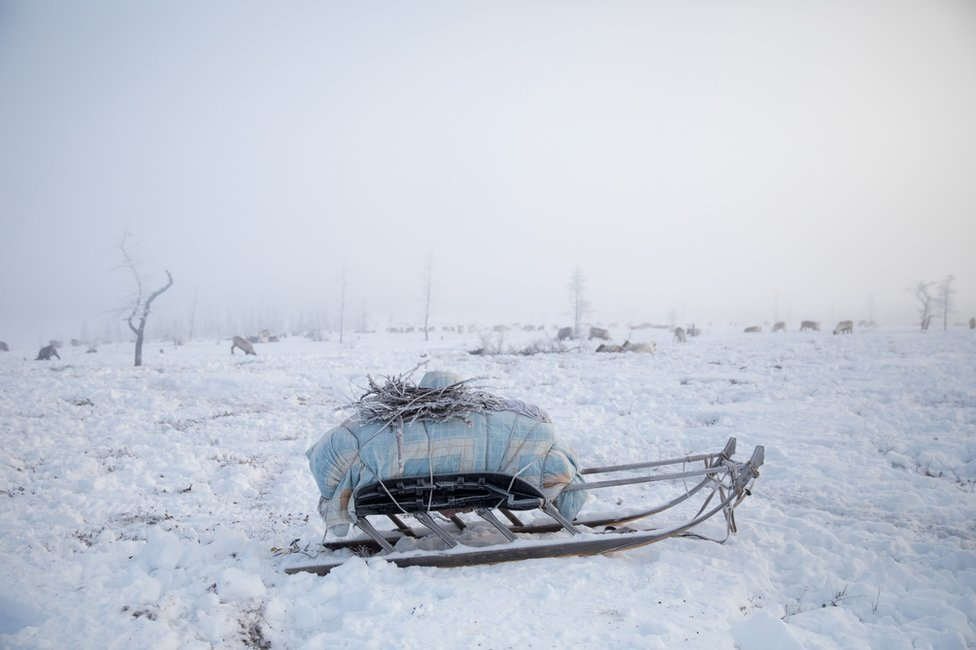 A packed sled, ready for migration. Yamal Peninsula, Siberia, Russia.