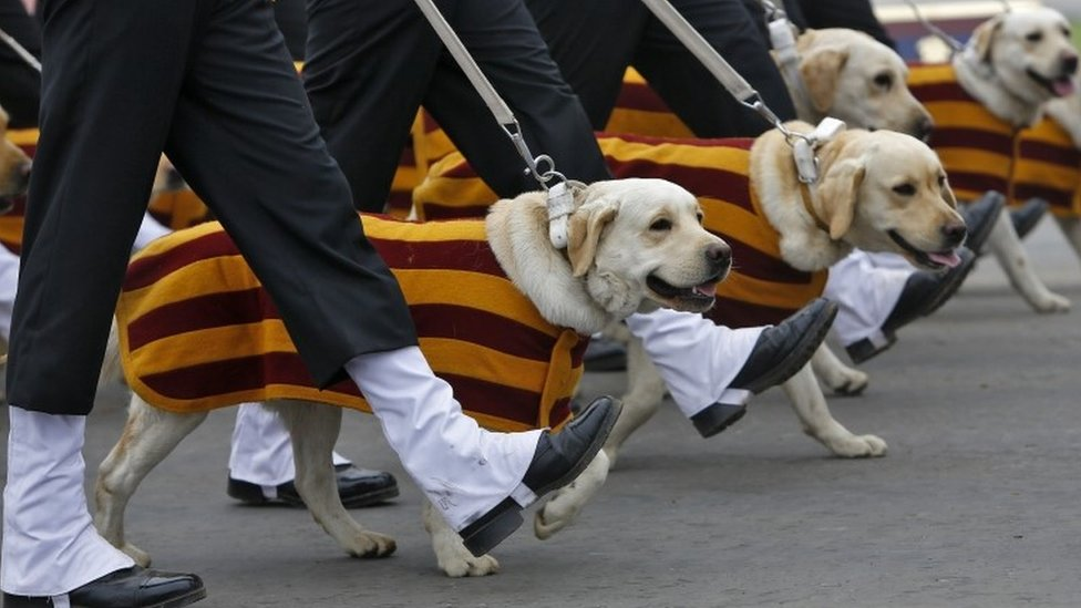 Indian Army soldiers march beside their dogs during the Army Day parade in New Delhi, India