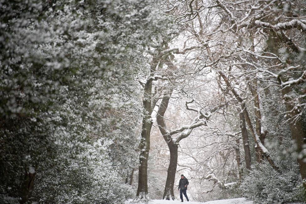Snow falls as people walk in Sutton Park in Birmingham, on 9 February 2021