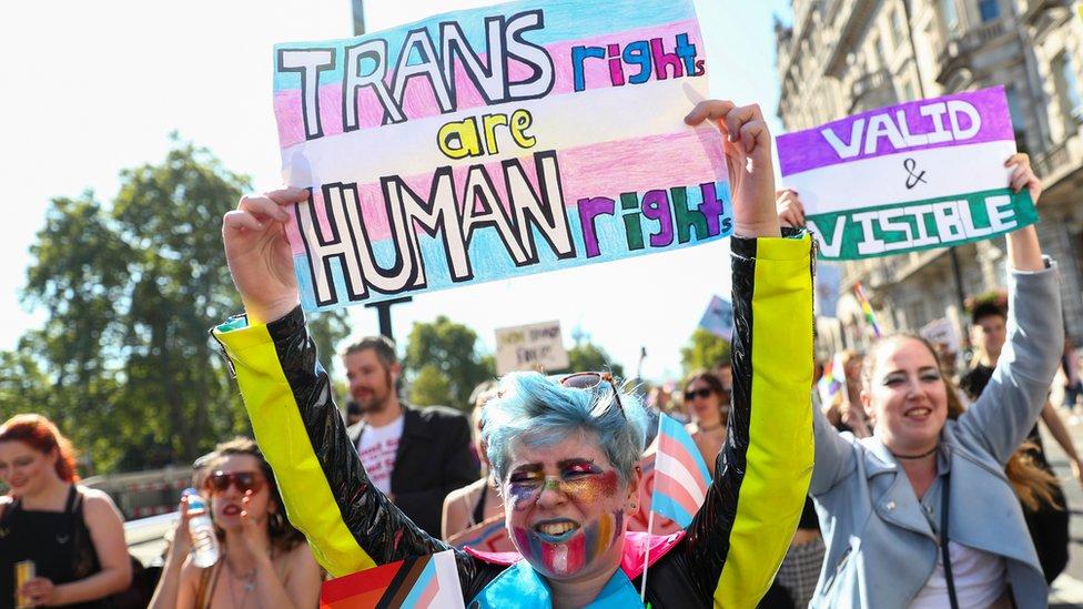 Trans Pride demonstrators