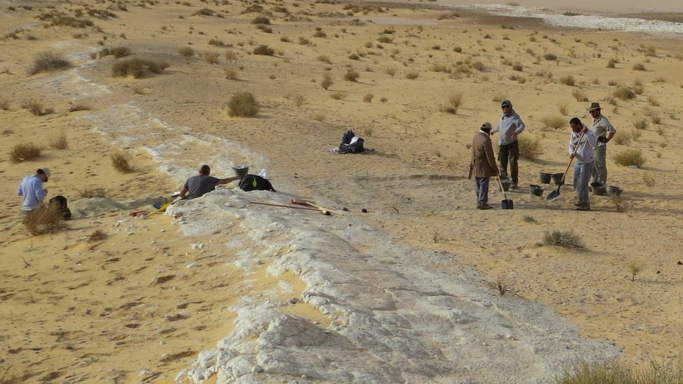Yellow sand with a white vein running through it. A group of scientists sit and stand in middle distance.