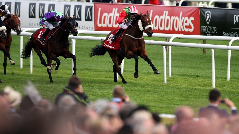 Ladbrokes horse racing betting rules for limit european darts championship 2021 betting