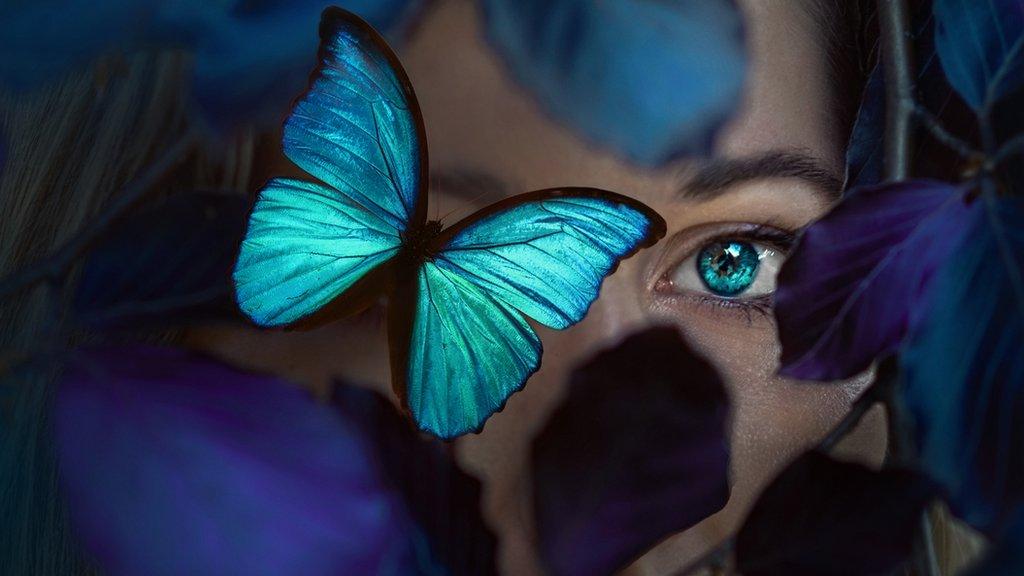 Ojo y mariposa