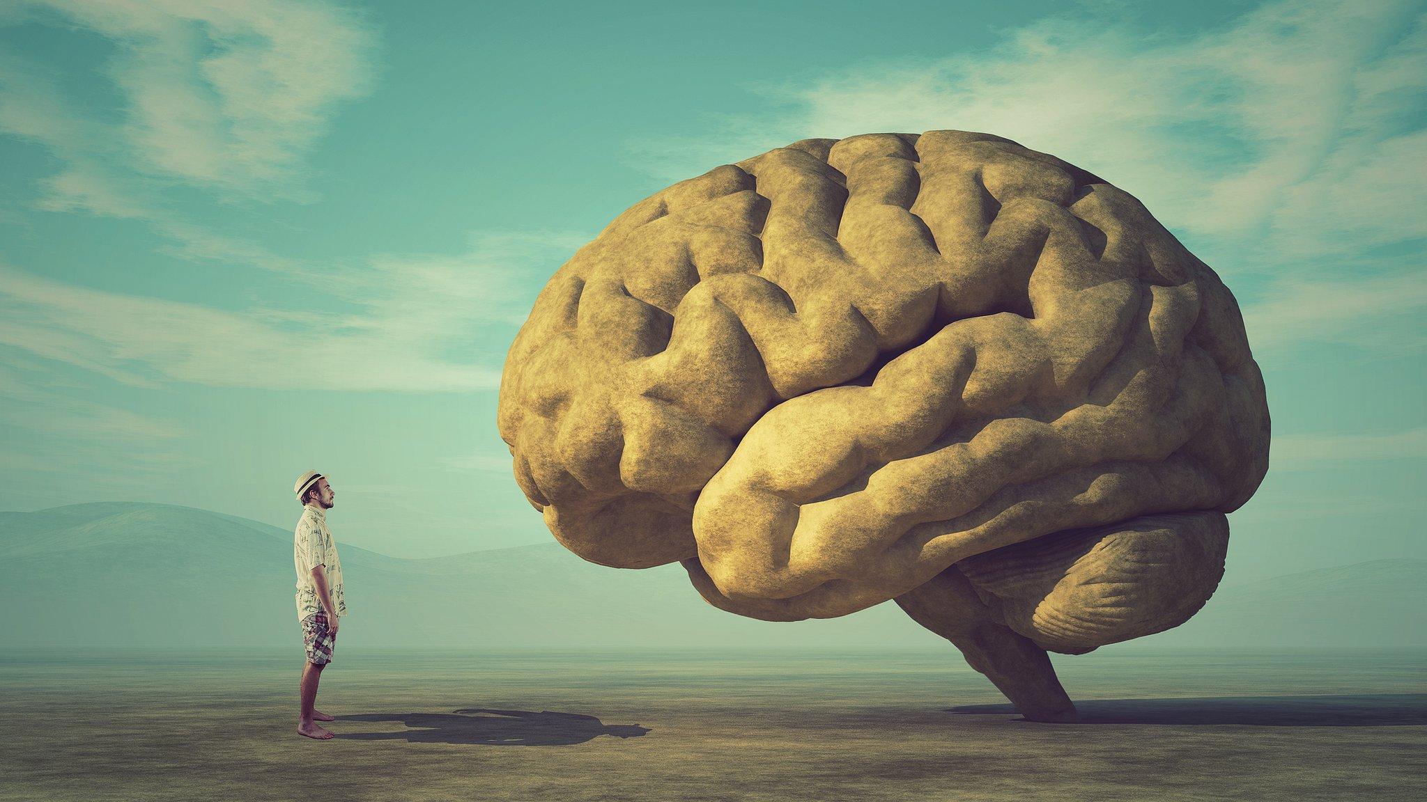 Games melhoram a memória - e outras revelações do maior experimento sobre inteligência já realizado no mundo - BBC News Brasil
