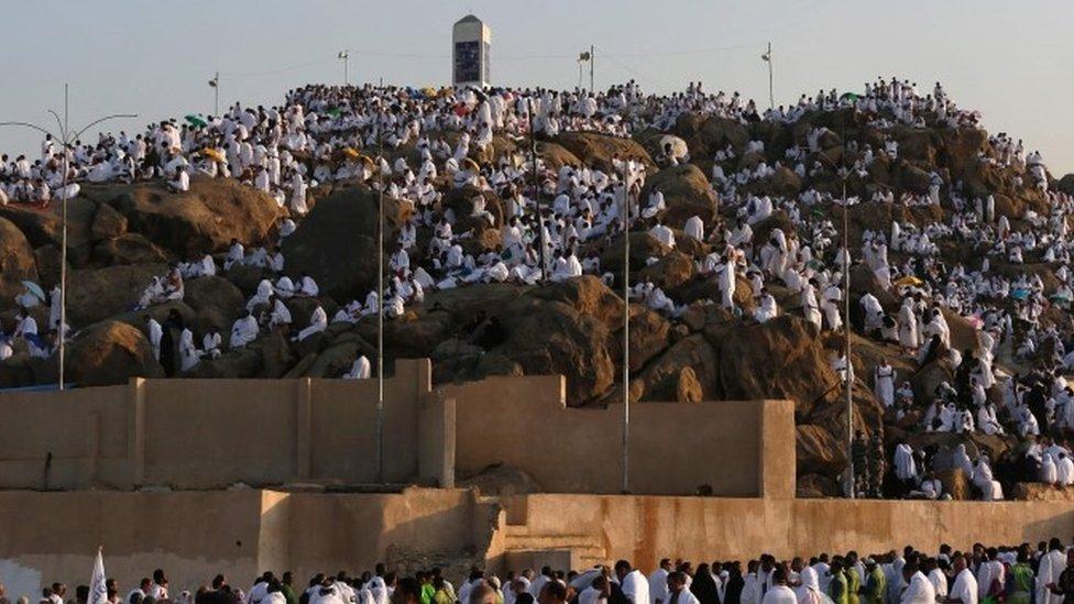 Muslim pilgrim join one of the Hajj rituals on Mount Arafat near Mecca (11 September 2016)