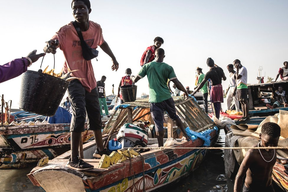 Fishermen unload their catch at a port in Bissau, Guinea-Bissau - Monday 25 November 2019