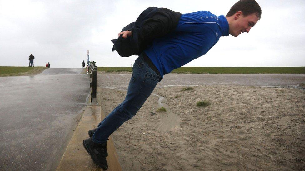 muškarac na zidiću u holandiji
