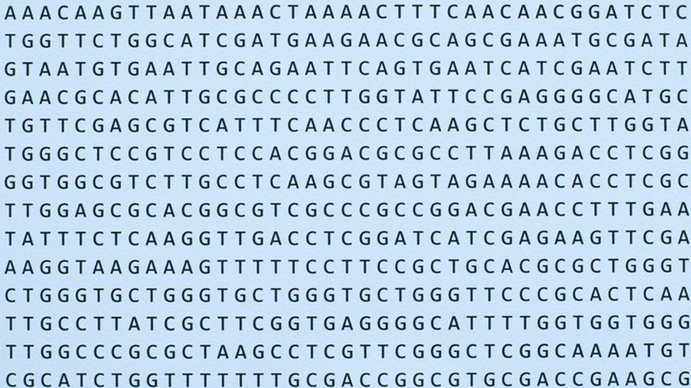 Secuencias de nucleótidos de ADN.